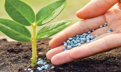 Sondeo de precios de la Defensoría del Consumidor  reporta nuevas bajas de precios de seis fertilizantes