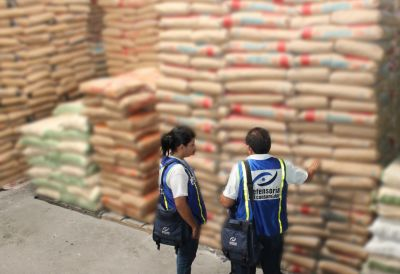 Harinas de trigo con notable disminución de precios