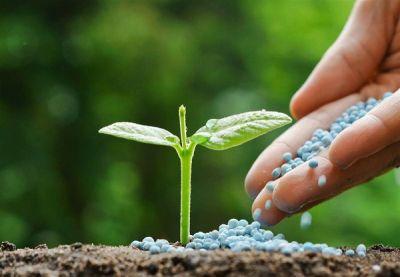 5 fertilizantes con sensible disminución de precios reporta sondeo de la Defensoría del Consumidor